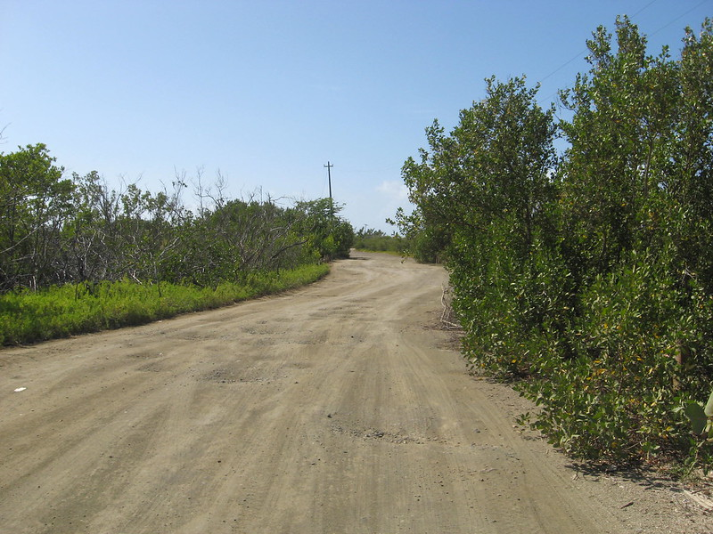 "dirt road, by Kristine Pethick, ""Dirt Road to Playa Sucia"""